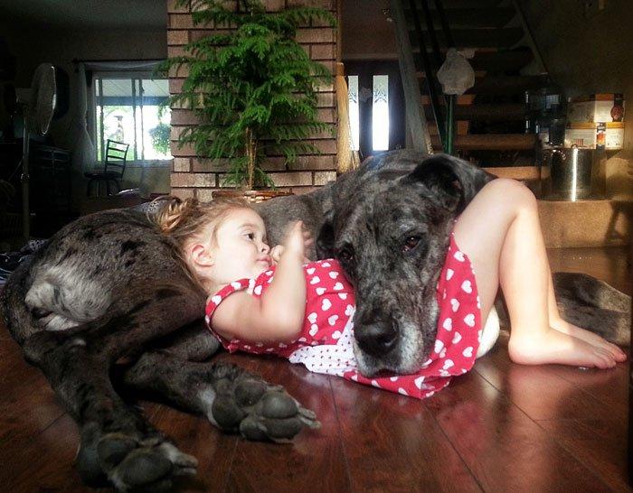 22 photos réconfortantes de bébés qui posent avec leur grand chien
