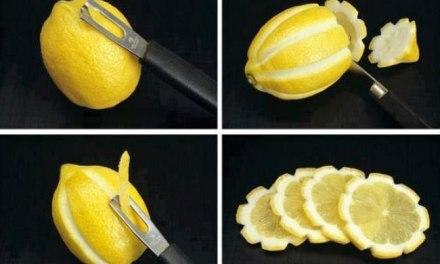 Econome + citron = fleurs
