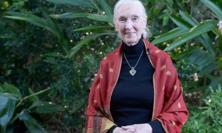 NOUS SOMMES CE QUE NOUS MANGEONS – Jane Goodall
