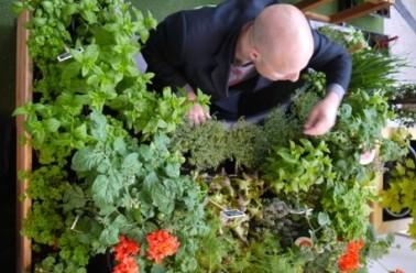 Jardinothérapie : cultiver la terre pour cultiver son estime de soi
