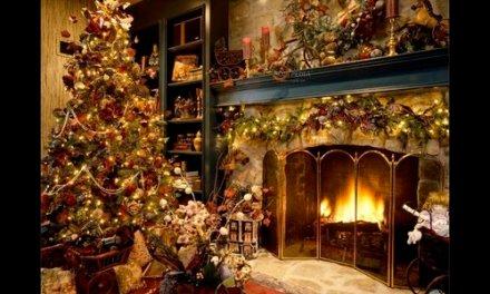 Les cendres de bois sont recyclables: vivons écolo !