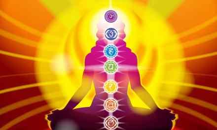 Définition: Chakra veut dire «Roue» en sanscrit, langue sacrée de l'Inde. Explication des 7 chakras.