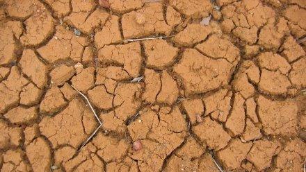 L'Australie donne 9 millions de dollars aux pays frappés par la sécheresse