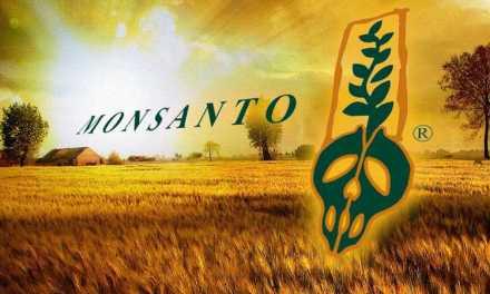 Bonne nouvelle: Monsanto en difficulté financière. Tout arrive!