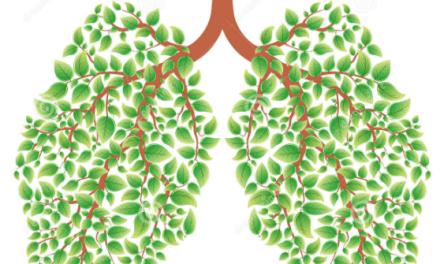 Sirop maison pour libérer les poumons des mucosités