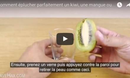 Astuce: comment éplucher parfaitement un kiwi, une mangue ou un avocat