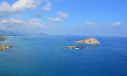 Obama crée la plus grande réserve naturelle marine du monde à Hawaï, sa terre natale