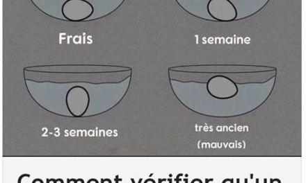 Comment vérifier la fraîcheur de vos oeufs