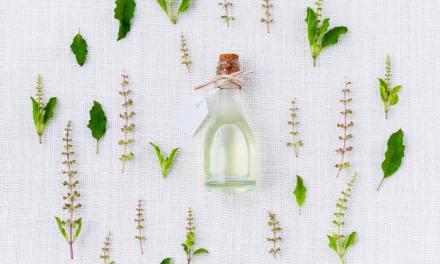 Santé : plus de 28000 plantes ont des propriétés médicinales.