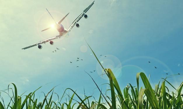 Recycler des huiles de cuisine pour réduire l'empreinte carbone du transport aérien
