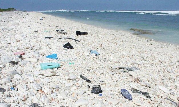 Etats-Unis: Des scientifiques créent par hasard une enzyme dévoreuse de plastique