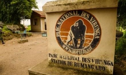« Happy end » pour l'enlèvement de deux Britanniques dans l'est de la RDC