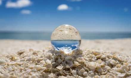 Australie: la plage de Shell Beach n'est pas faite de sable mais de milliards de petits coquillages !