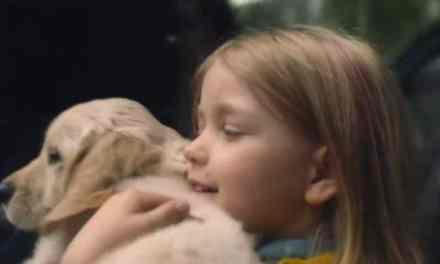Dernière campagne de 30 Millions d'Amis. Poignant