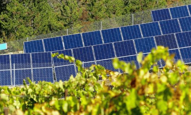 France: Premier parc solaire citoyen à Luc-sur-Aude