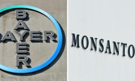 Glyphosate : Bayer douché par le revers judiciaire de Monsanto