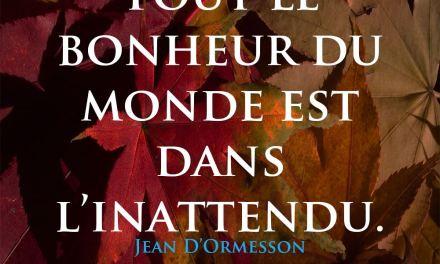 Bon Vendredi 28 Septembre à toutes et à tous de la part du JDBN