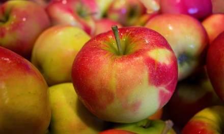 Ne perdez pas vos pommes: faites une Suzanne! Avec l'accent Québécois en bonus!