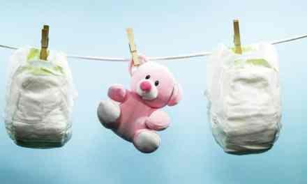 Pays-Bas : les couches bébé recyclées en… pots de fleurs