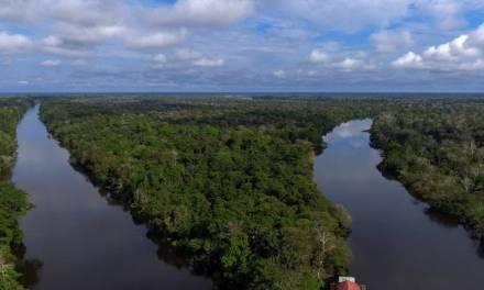 Le Brésil refuse à Total un permis d'exploration dans l'embouchure de l'Amazone