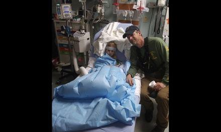 Un garçon de 3 ans, retrouvé après avoir disparu deux jours, affirme qu'un ours lui a sauvé la vie