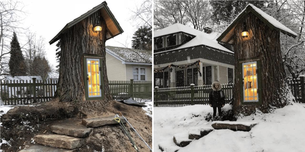 Elle transforme les restes d'un arbre centenaire en petite bibliothèque de rue