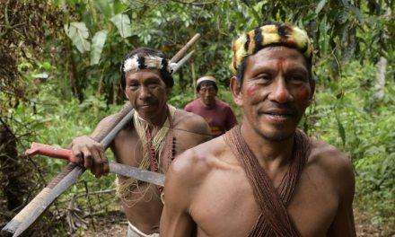 Les Indiens waorani en lutte contre l'exploitation pétrolière