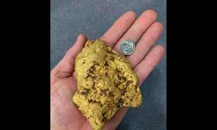 Un Australien tombe par hasard sur une pépite d'or de 1,4kg