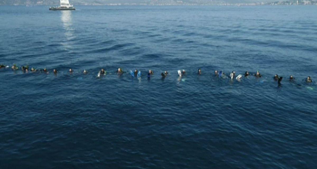 Des plongeurs de Cannes et de Mandelieu réalisent une chaîne de l'amitié pour la Méditerranée
