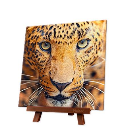 Puzzle 256 MINI – Piezas de Plástico – Close up of Leopard – Pintoo