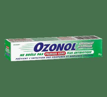 Ozonol Antibiotic Plus Ointment 30 g – Ozonol : Cream ...
