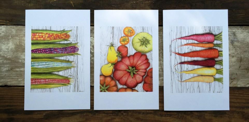 Harvest Table sketchbook for banner