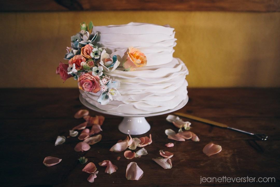 elsabe-and-garths-wedding-014
