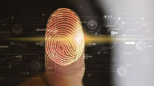 Audit Formation Cybersécurité Sécurité Données Perpignan