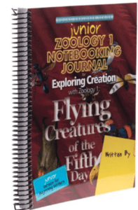 zoology flying creatures junior journal