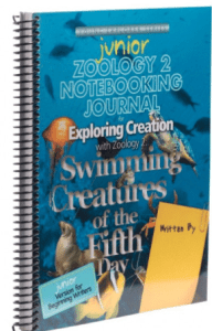 zoology swimming creatures junior journal