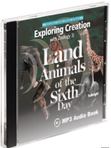 zoology land animals audio