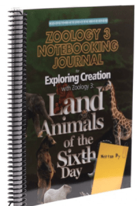 zoology land animals journal
