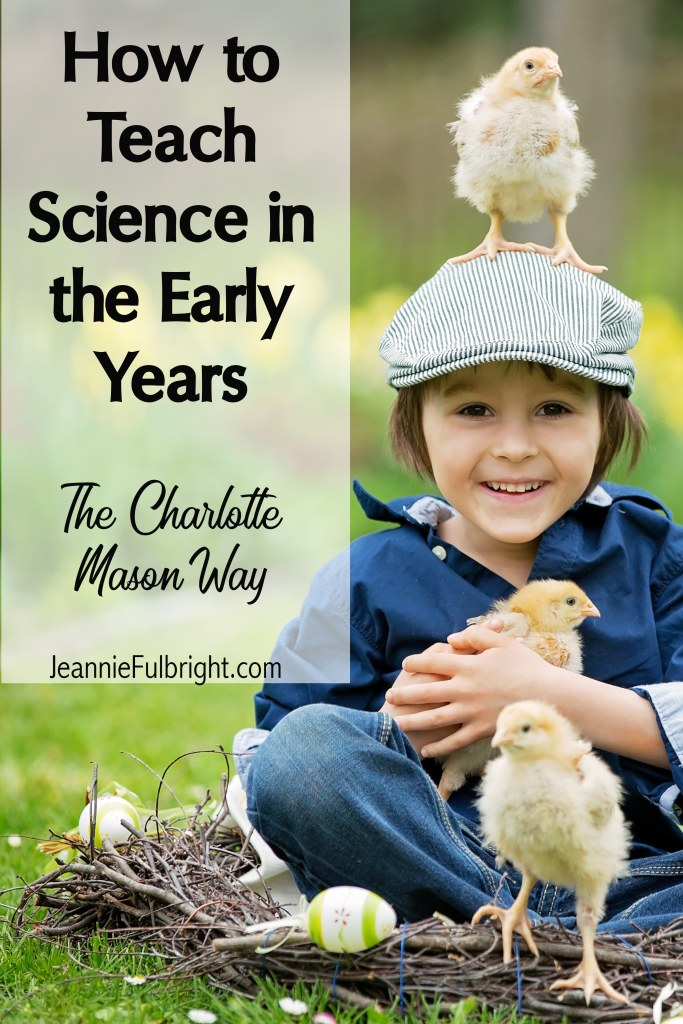 Cute child learning science in nature with chicks