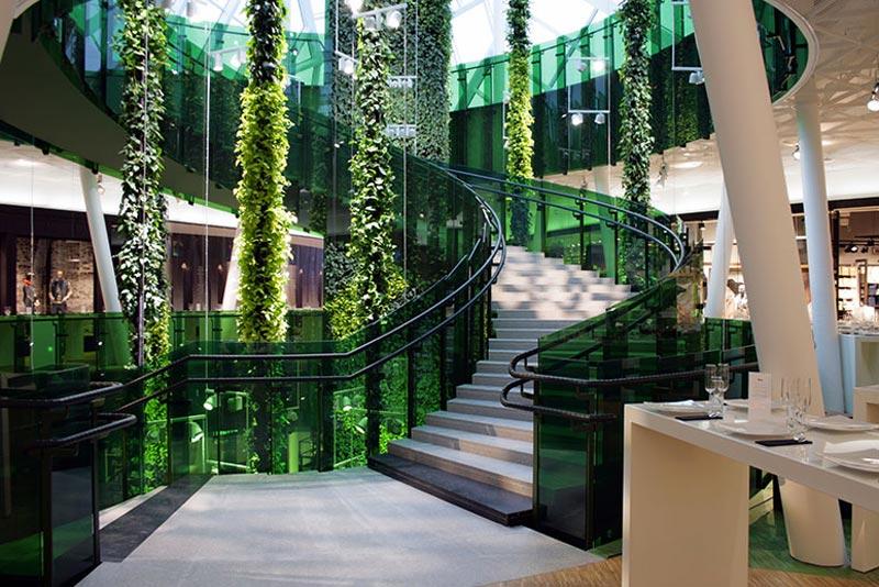 Green Hanging Plants