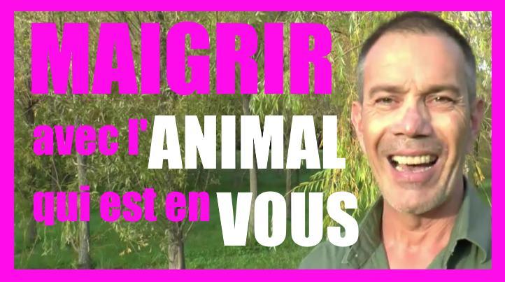 Maigrir avec l'animal qui est en vous