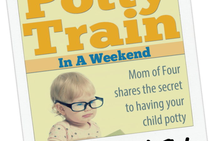 Potty Train in a eekend book review