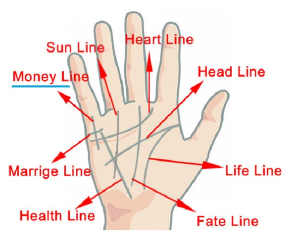 palmistry know about your money line