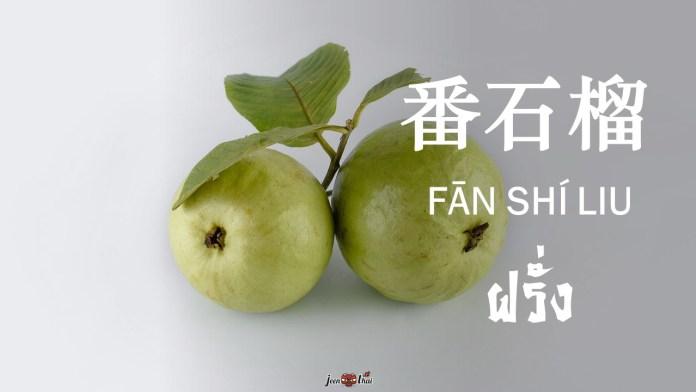 ผลไม้ภาษาจีน