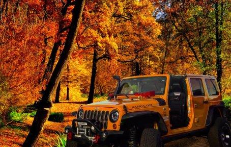 jeepwrangleroutpost-jeep-wrangler-fun-times-oo-70