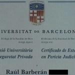 Perito Judicial : Seguridad Privada.
