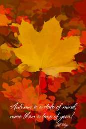 yellow maple leaf on red/orange background