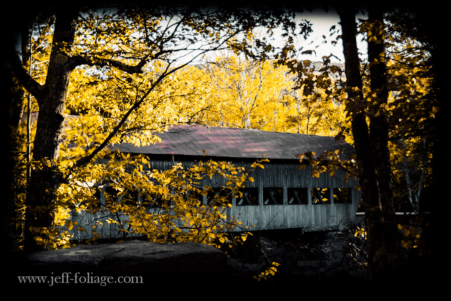 Golden fall foliage over the Albany covered bridge