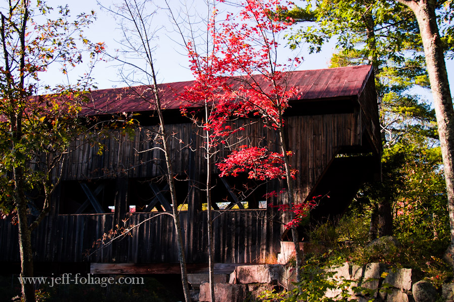 Side view of the Fall colors over the Albany covered bridge