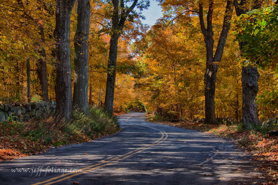 fall foliage lines the road in eastern Massachusetts